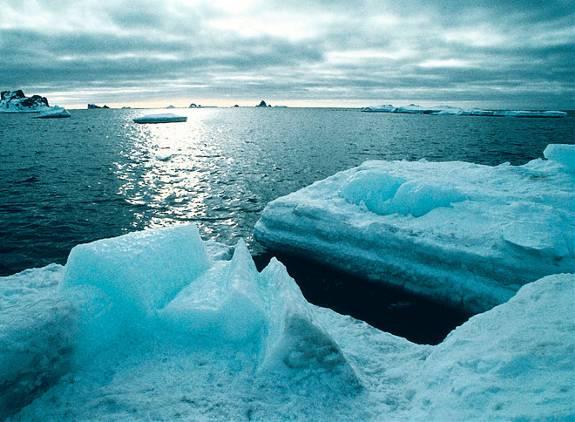Antartica II