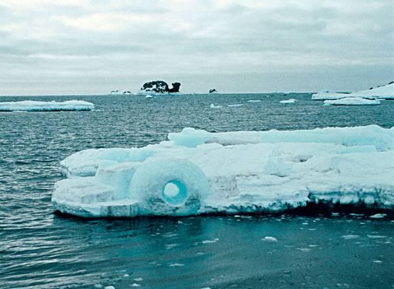 Antartica III